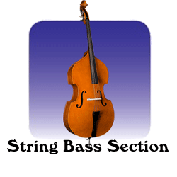 Orchestra Section