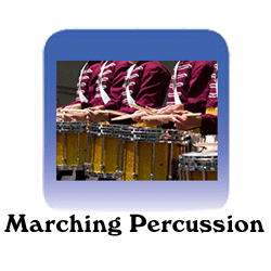 Percussion Section